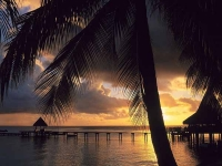 Французская Полинезия - ВЕЧЕРНЯЯ ПОЛИНЕЗИЯ