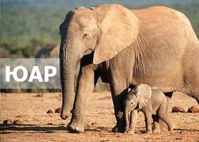 ЮАР на Новый год :: Удивительная Африка